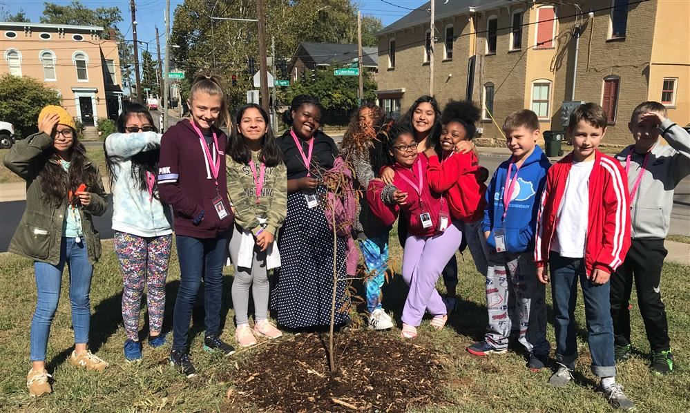 40 Trees Planted During Tree Week