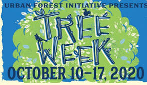 Tree Week 2020 a Success!