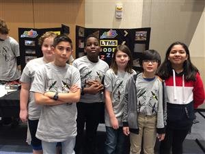 Wooden puzzle STLP group presenters