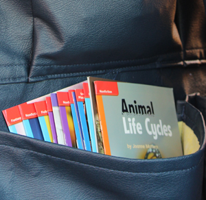 Pouches on the buses hold a diverse collection of children's books.